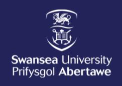 斯旺西大学